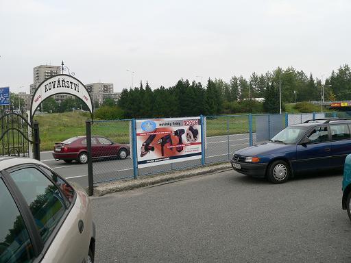 modra-labut2